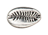 TierraCast : Bead - Cowrie Shell, Antique Silver